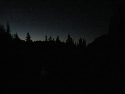 First hint of light over a foreboding forest
