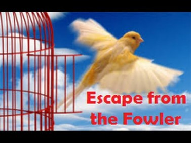 escape from the fowler