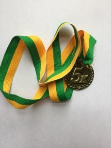 silver medal shrunk